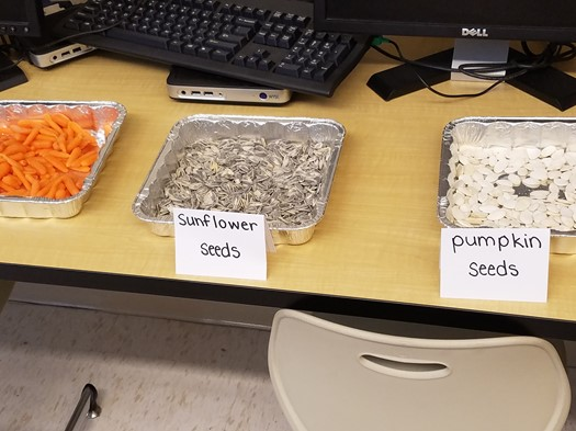 Miss Luoma's Class Taste Test_Edible Parts of Plants