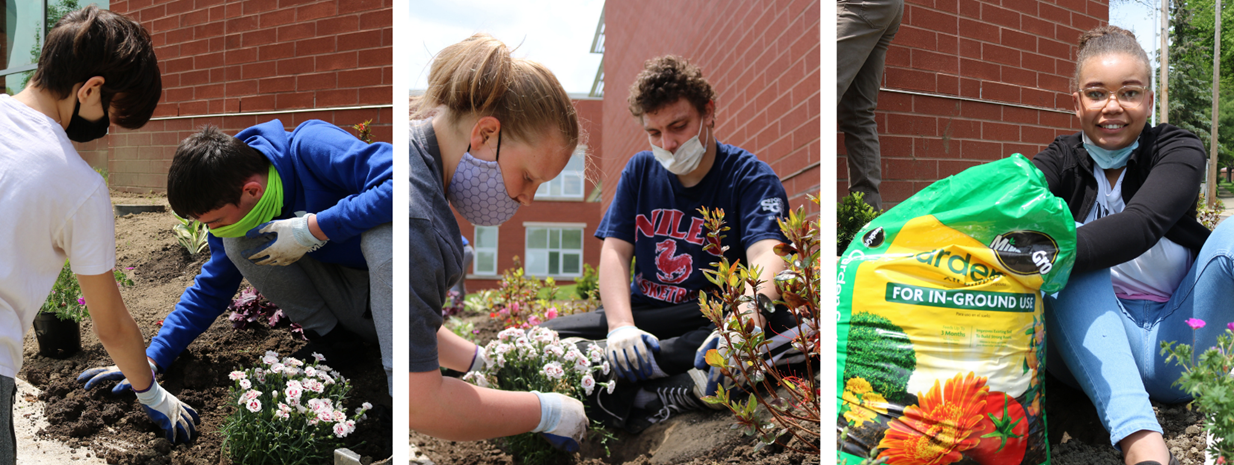 Students collaborate on planting flowers